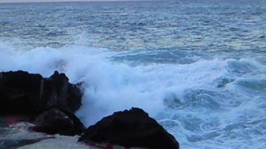 秋の浜2convert_20100926174743