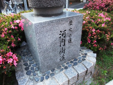 DSCF4619.jpg