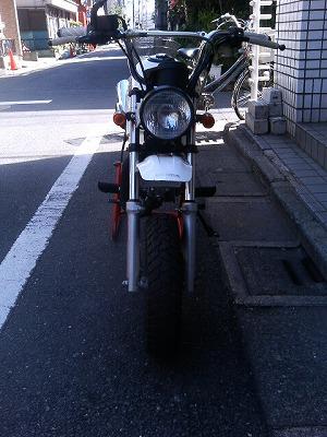 P1000003_20101215163433.jpg