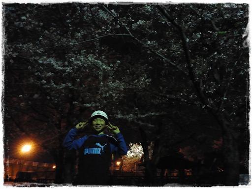 夜桜2013