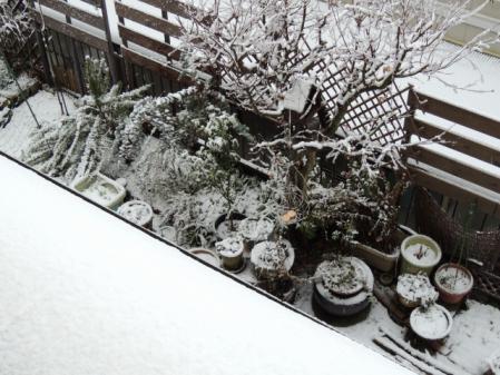 N1550初積雪