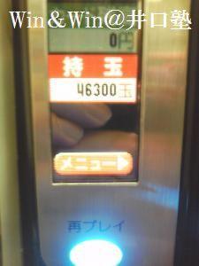 12328_tn_43eba1b2e4.jpg