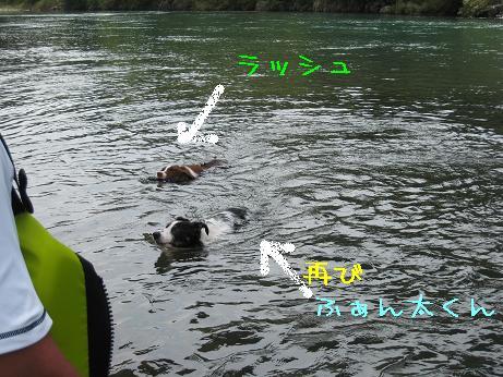 hidakagawa10.jpg