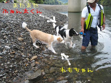 hidakagawa11.jpg