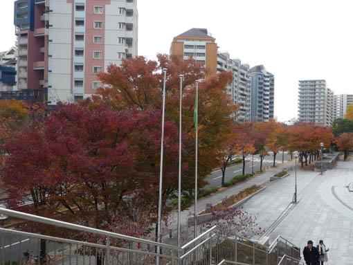 furuya5.jpg