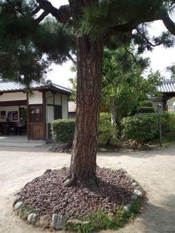 hokiji6.jpg