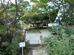hukutonyakushi10.jpg