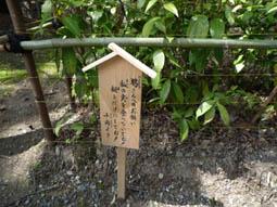 oharano10.jpg