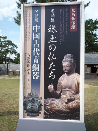 tenjikunara6.jpg
