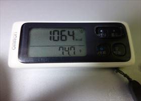 DSC01219-2014t.jpg
