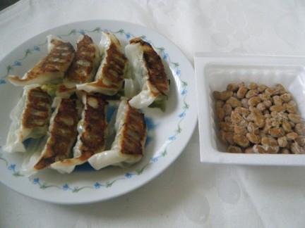 補足5月20日納豆餃子1