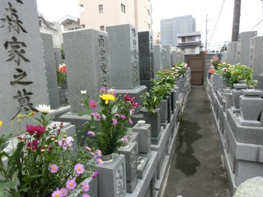 お墓参り1