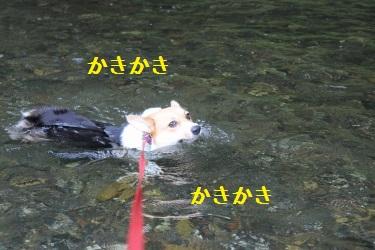 萌香たんが泳いだ!!