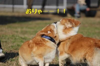 よしっ遊ぼう!
