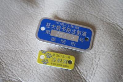 201004171