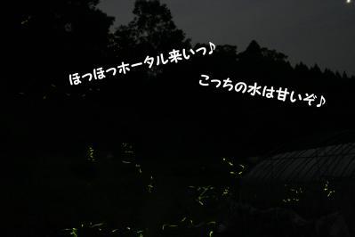 2010062010