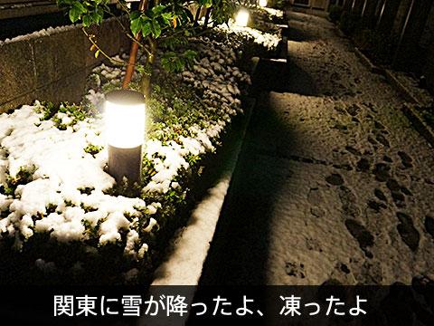 yuki_TOP.jpg