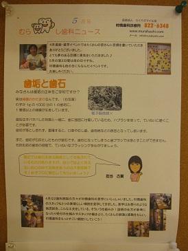 NEWS1005071