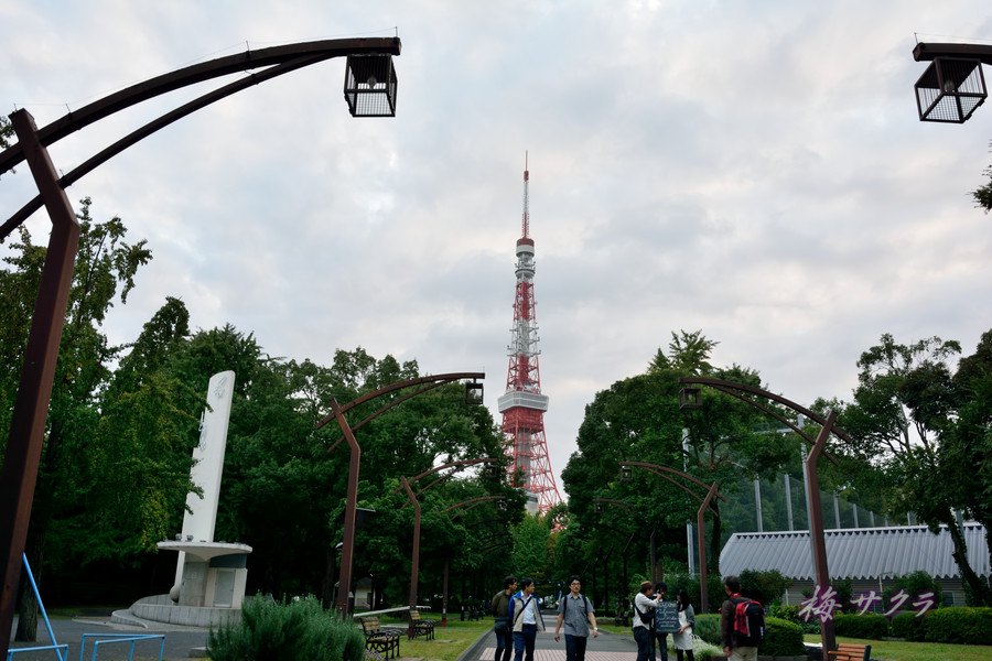 東京タワー1(1)変更済