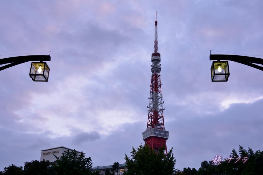 東京タワー1(5)変更済