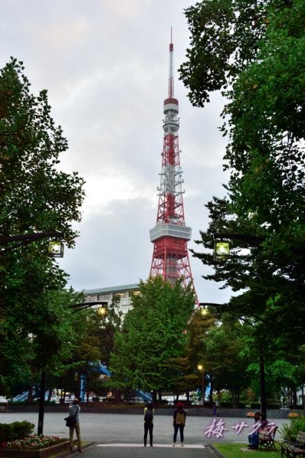 東京タワー1(3-1)変更済