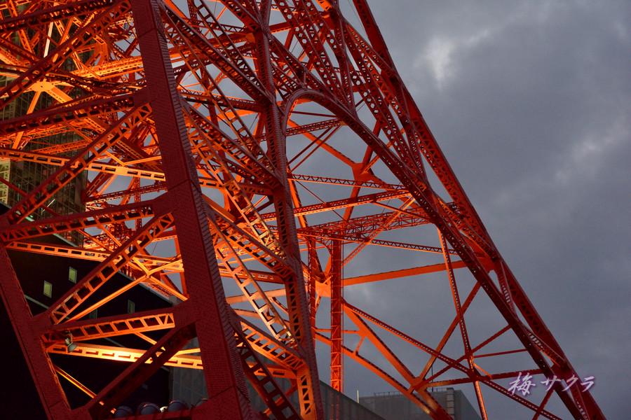 東京タワー1(8)変更済