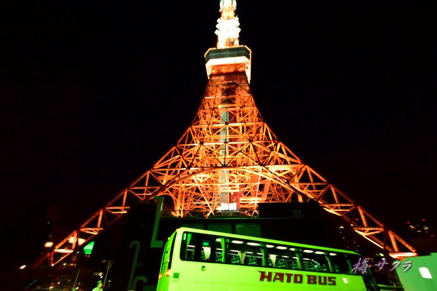 東京タワー2(3)変更済