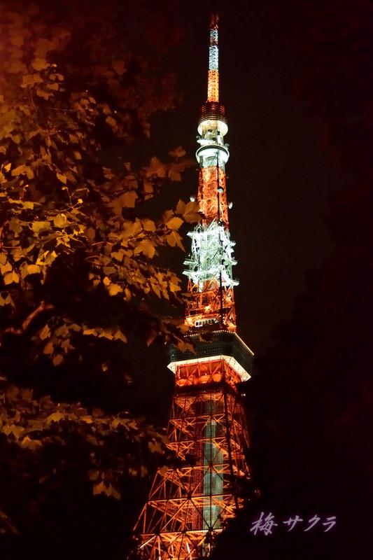 東京タワー2(10)変更済