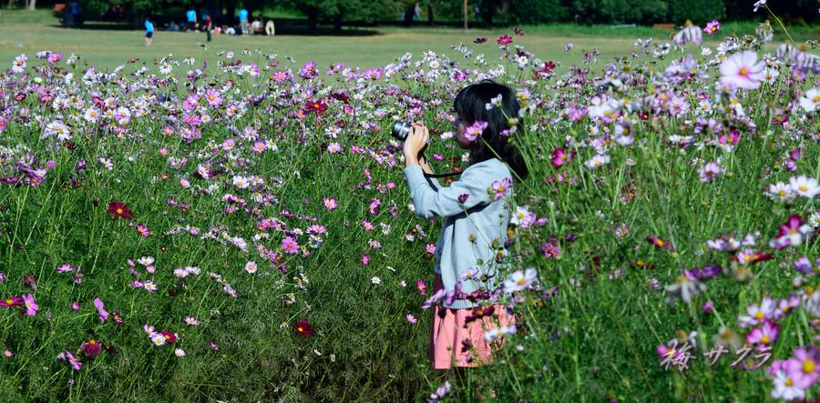 昭和記念公園3(5)変更済