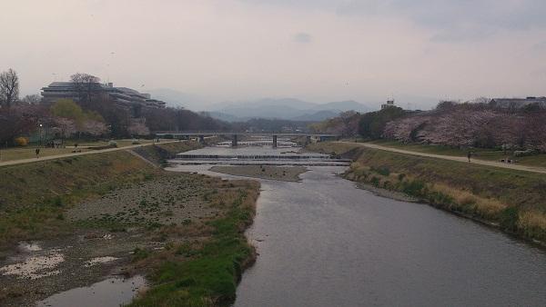2013年3月28日京都 鴨川