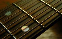 Guitar-Strings-Photography-Guitar.jpg