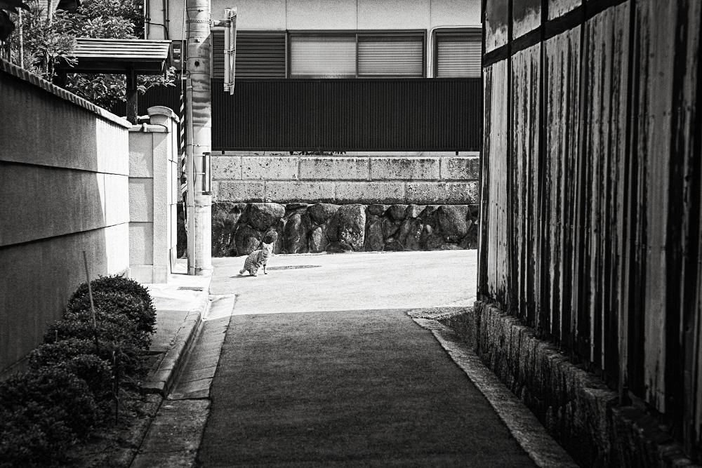 奈良市左紀町04
