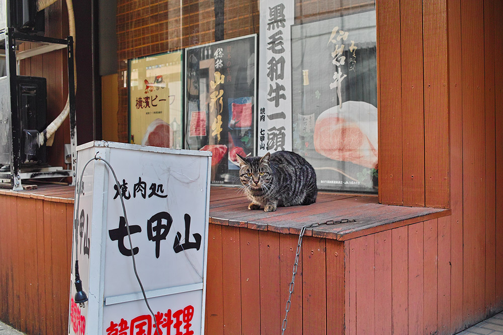 130120渋谷33
