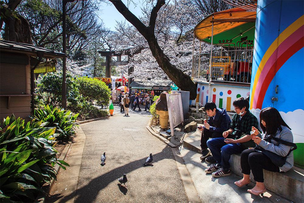 130322上野公園02