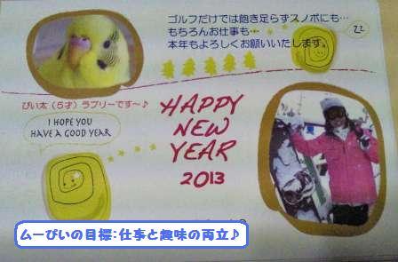 image_20130101214517.jpg