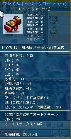 Maple008