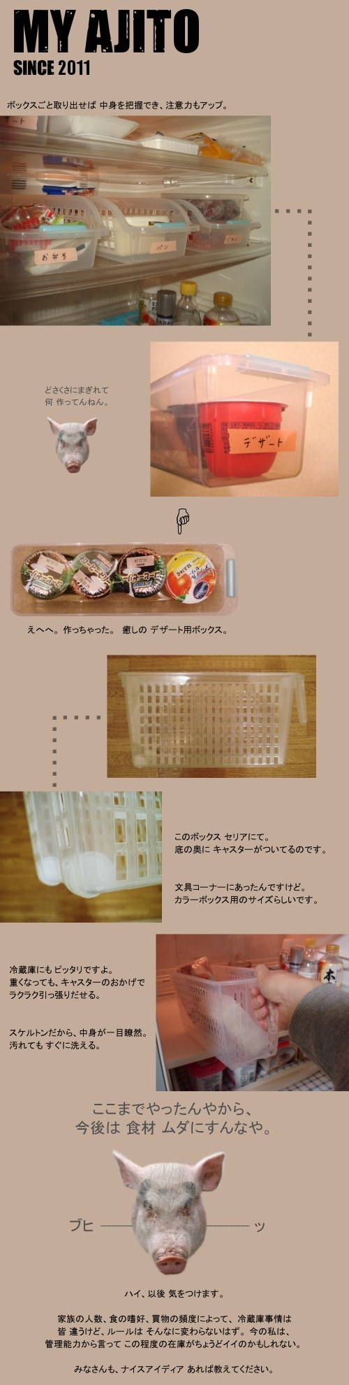 REI_5.jpg