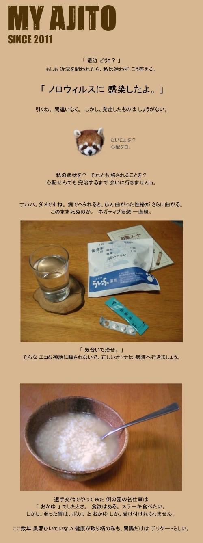 noro_3.jpg