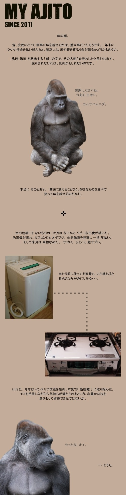 toshinose1.jpg