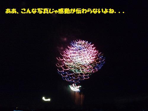 2010-08-28_201200.jpg