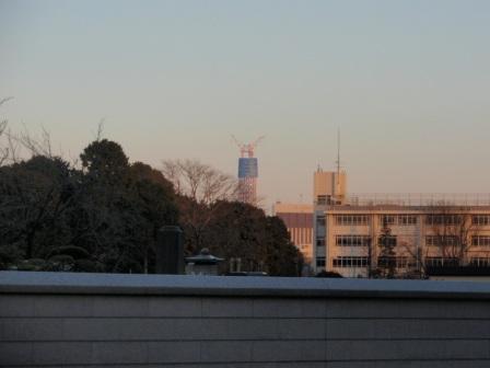 寛永寺から見た東京スカイツリー_100220