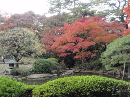 東京都庭園美術館_101128_1