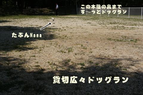 060106.jpg