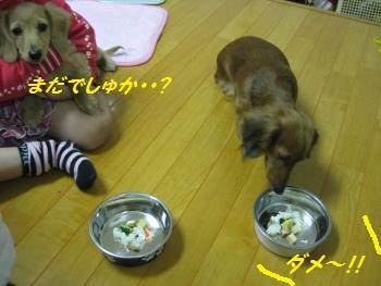 oyako32.jpg