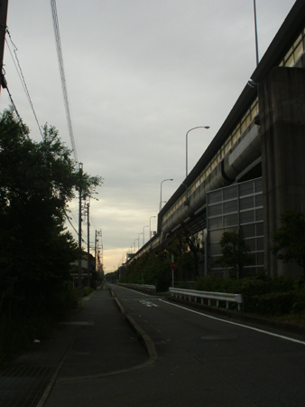 P6093245.jpg