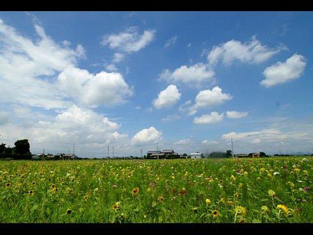 album00001_20110806200707.jpg