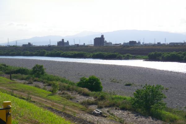 忠節橋下流のテトラ帯