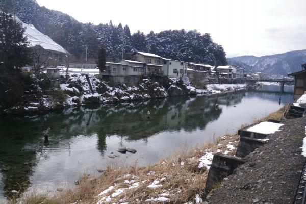 吉田川に立ちこむフライフィッシャーマンたち