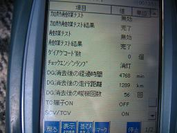 IMG_3313.jpg