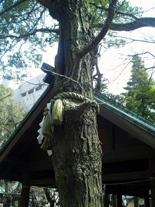那古野神社木